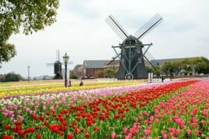DE NOOD Huis Ten Bosch Japan